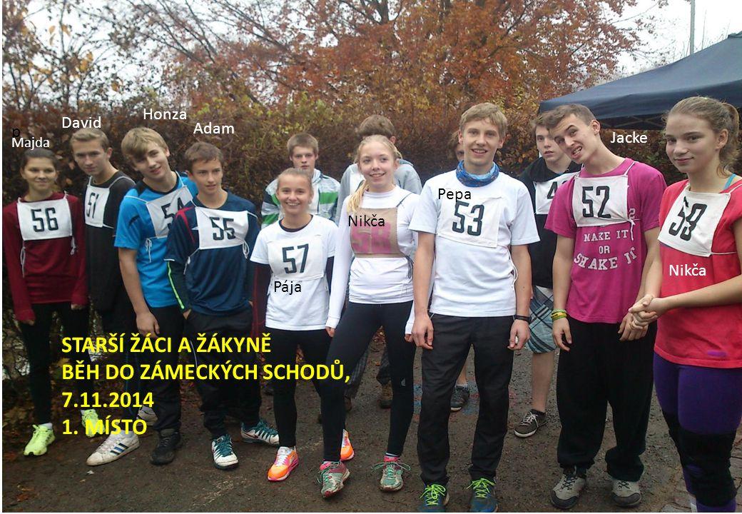 STARŠÍ ŽÁCI A ŽÁKYNĚ BĚH DO ZÁMECKÝCH SCHODŮ, 7.11.2014 1.