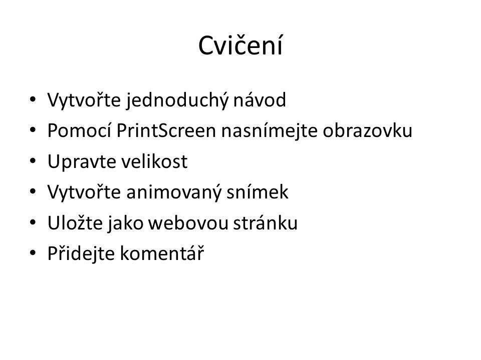 Cvičení Vytvořte jednoduchý návod Pomocí PrintScreen nasnímejte obrazovku Upravte velikost Vytvořte animovaný snímek Uložte jako webovou stránku Přidejte komentář