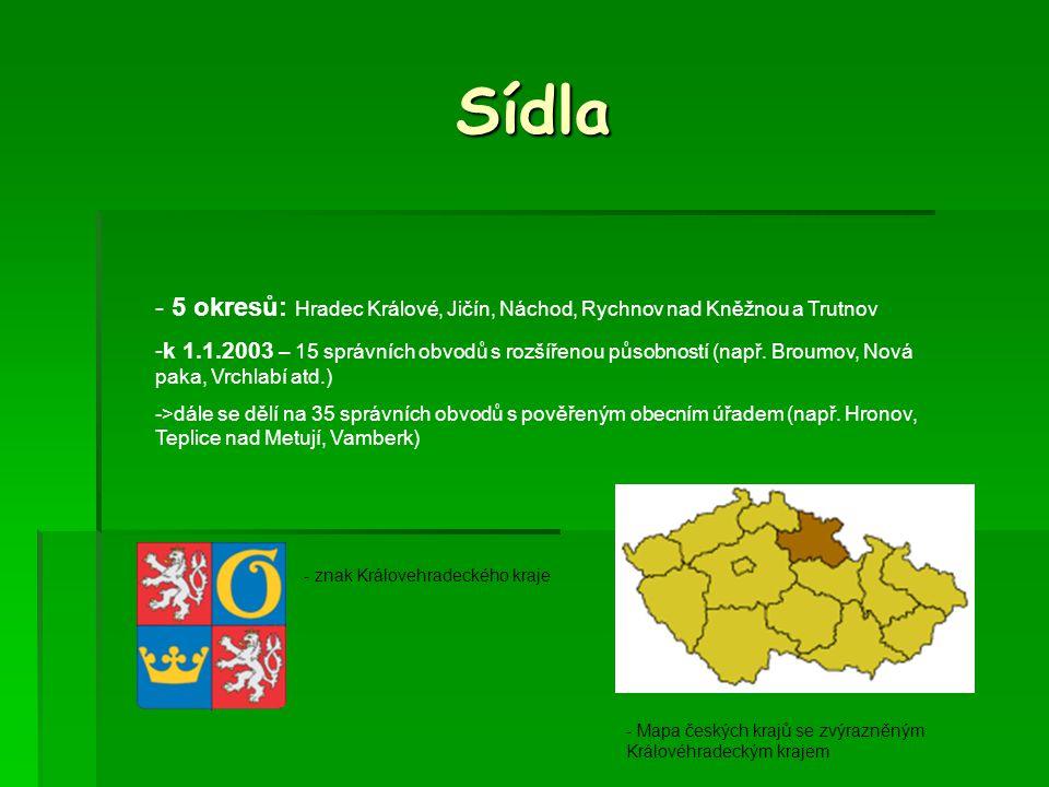 Ekonomika-průmysl (čísla jsou udávána v mil.Kč) - Průmysl celkem: 83 583 - Zpracovatelský průmysl (78 056) : -> textilní výroba, potravinářské výrobky - Výroba hutních a kovodělných výrobků (12 359) - Elektrické a optické přístroje (12 050) -Výroba dopravních prostředků ( 12 353) Akciovky: RUBENA a.s Hradec Králové (pryžové výrobky) (pryžové výrobky) JUTA a.s.