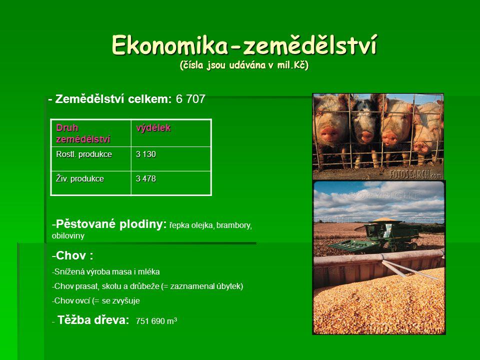 Ekonomika-zemědělství (čísla jsou udávána v mil.Kč) - Zemědělství celkem: 6 707 Druh zemědělství výdělek Rostl.