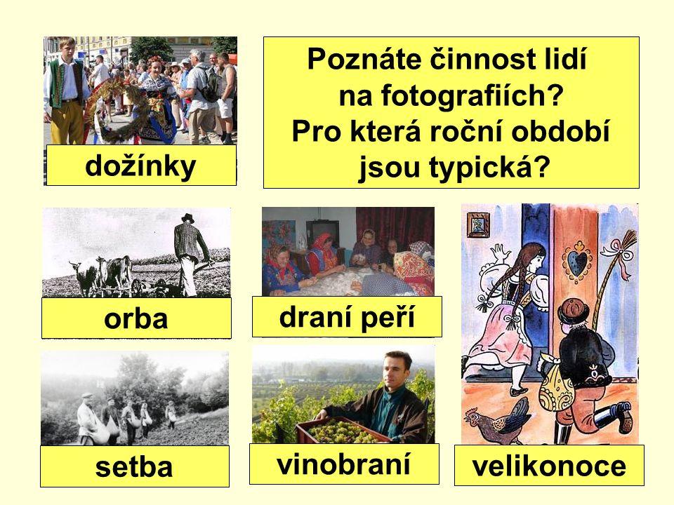Poznáte činnost lidí na fotografiích.Pro která roční období jsou typická.