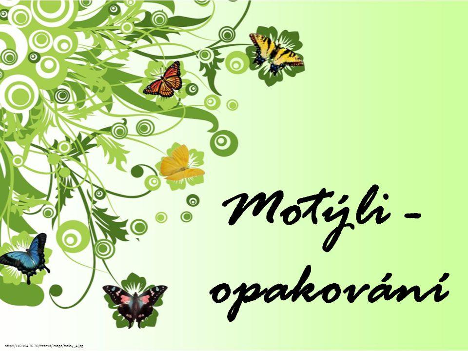 Vyjmenuj skupiny motýlů, kteří dostali svá pojmenování podle převažujícího zbarvení křídel: 1)...........................