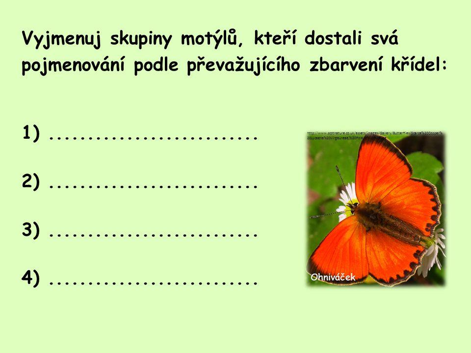 Který motýl je tohoto příčinou?.....................................................