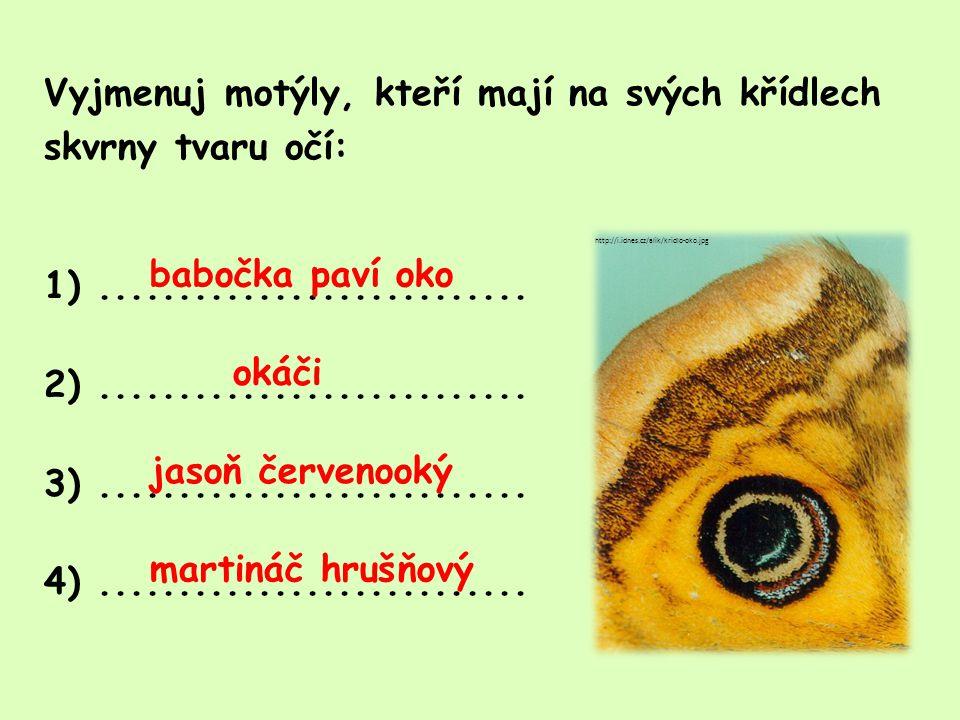 Vyjmenuj motýly, jejichž larvy považujeme za škůdce: 1)...........................