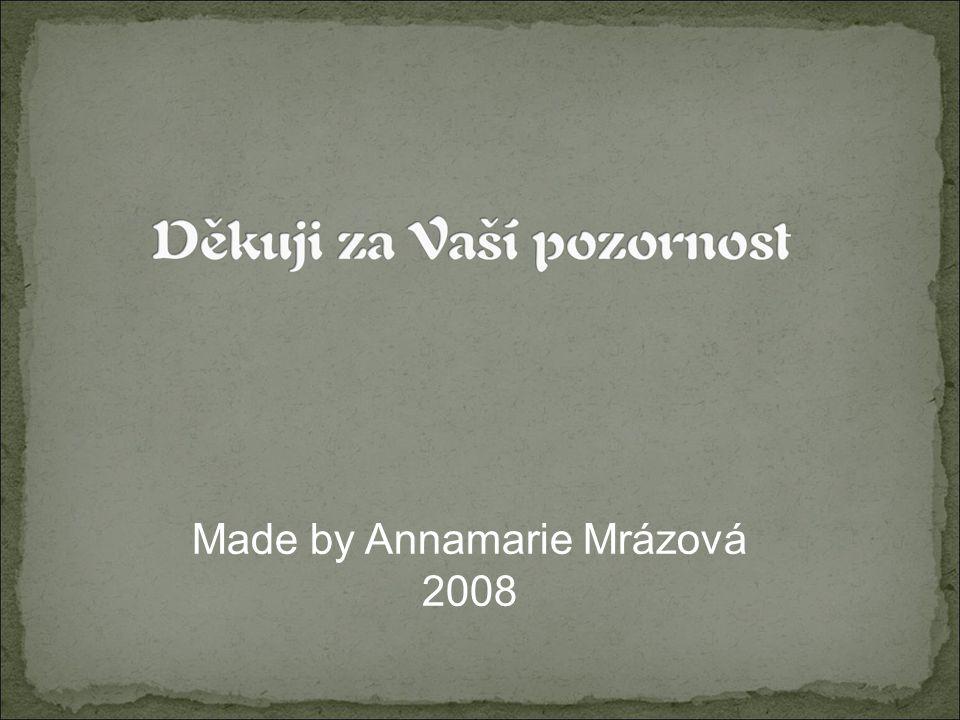 Made by Annamarie Mrázová 2008