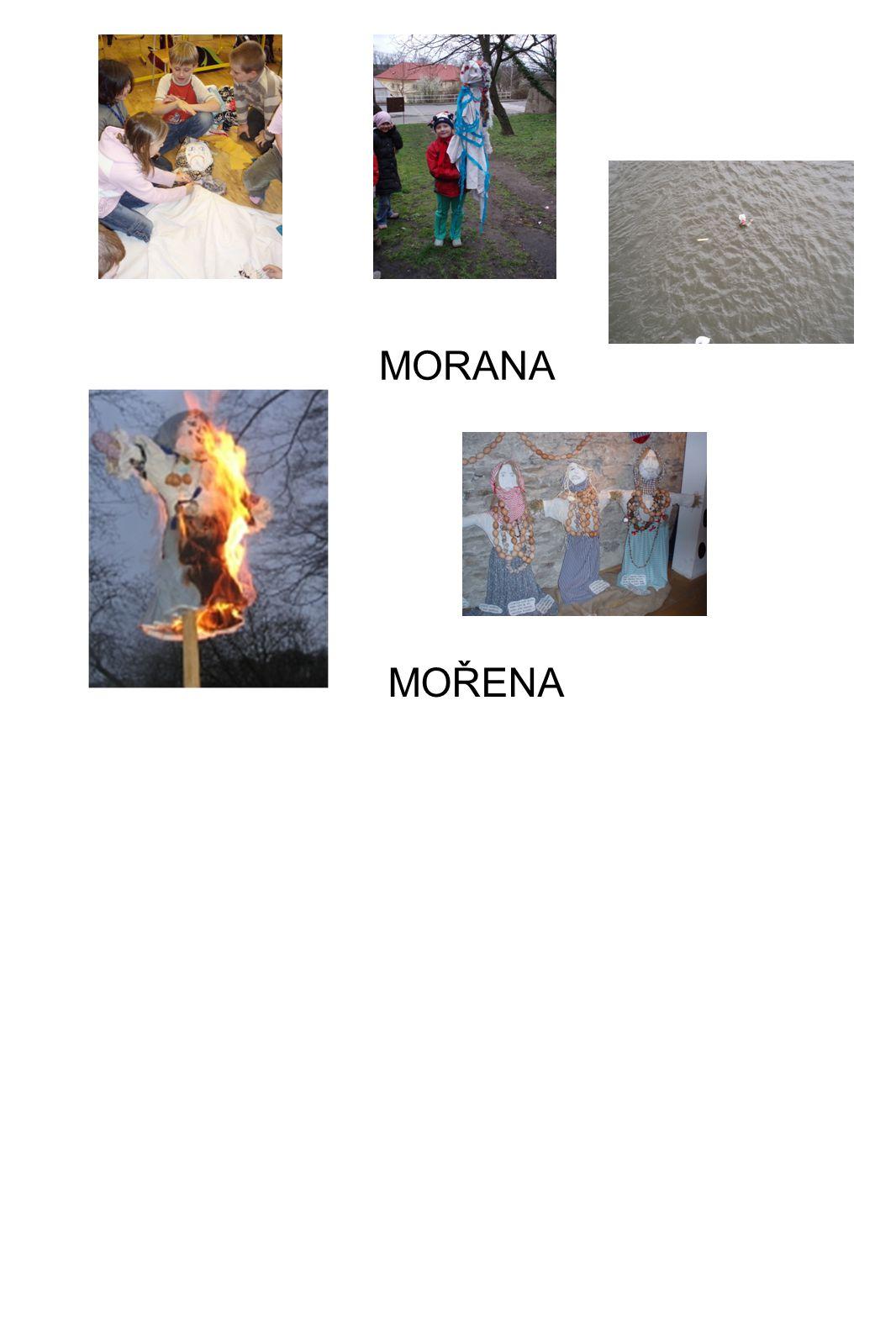MOŘENA MORANA