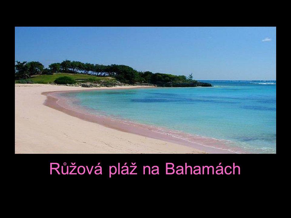 Růžová pláž na Bahamách