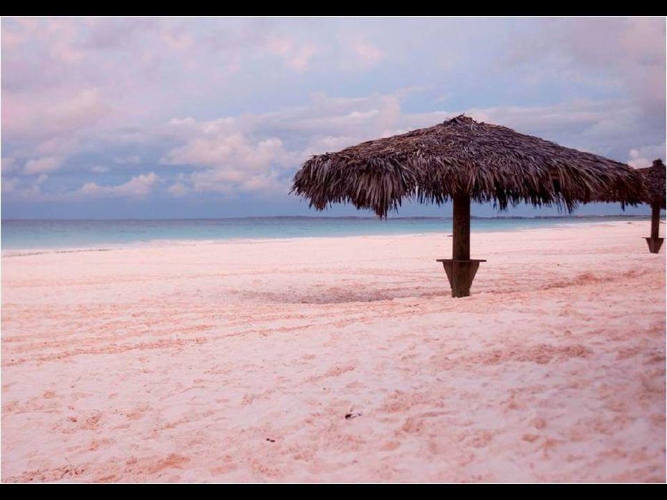Pink Sand Coral Beach je na Bahamách. Barva písku je způsobena sedimentací korálového původu rosacea.