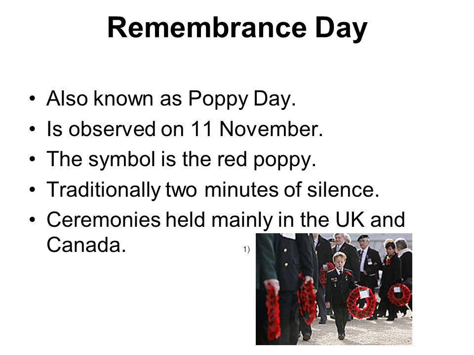 A Symbol 2) The red poppy.These poppies bloomed across battlefields in WWI.