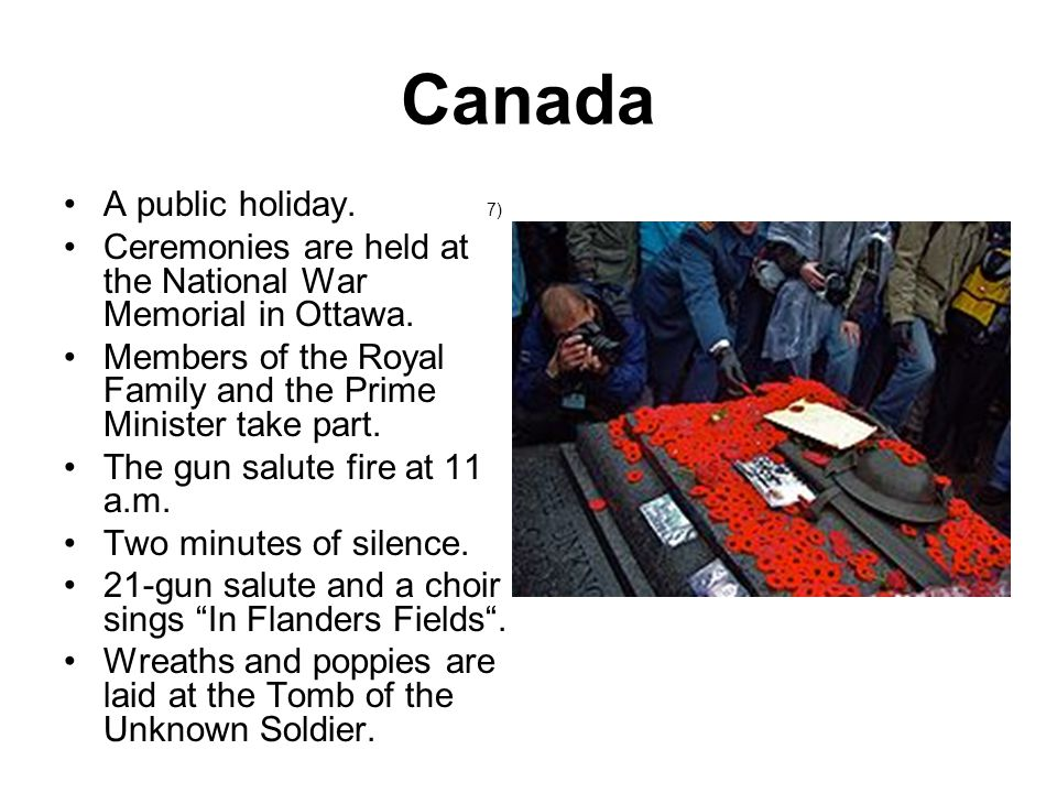 Exercise Instructions: Try to translate this poem and explain why it became one of the symbols of Remembrance Day.