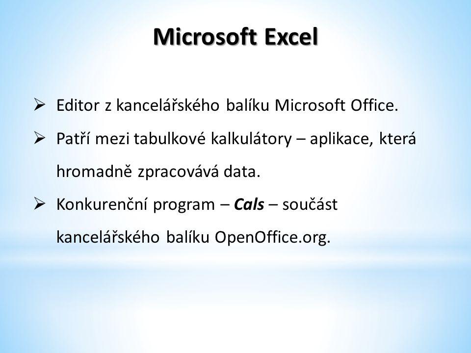 Microsoft Excel  Editor z kancelářského balíku Microsoft Office.