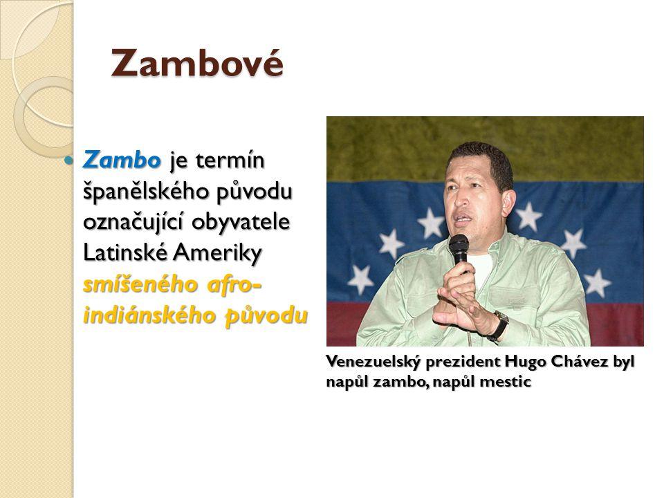 Zambové Zambo je termín španělského původu označující obyvatele Latinské Ameriky smíšeného afro- indiánského původu Zambo je termín španělského původu označující obyvatele Latinské Ameriky smíšeného afro- indiánského původu Venezuelský prezident Hugo Chávez byl napůl zambo, napůl mestic
