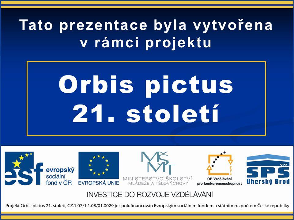 Parametry monitorů OB21-OP-EL-ELZ-MAR-U-3-018 Ing. Josef Martinák ml.