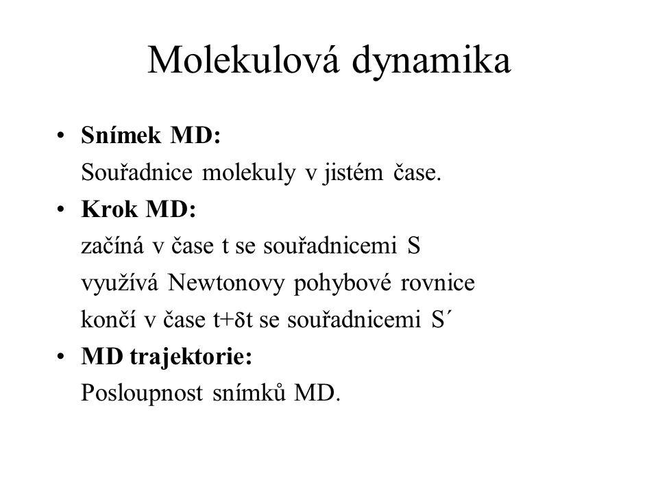 Molekulová dynamika Snímek MD: Souřadnice molekuly v jistém čase.