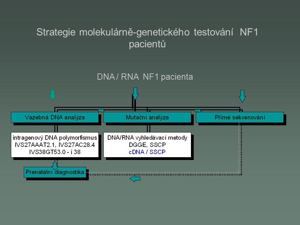 Molekulární markery neuroblastomu Tkáňově specifická exprese TH genu - buňky NB –Detekce v KD, periferní krvi - cirkulující buňky NB –Vysoká citlivost detekce(~1b./10 4-5 ) Nádorově specifická exprese buněčných antigenů MAGE, GAGE –kombinací více molekulárních markerů je možno postihnout heterogenitu NB- zvýší se pravděpodobnost záchytu NB –možnost zavedení a aplikace DNA vakcín Klinický význam:  stanovení diagnosy  určení prognosy  sledování průběhu onemocnění (MRD, relaps)  detekci NB buněk v transplantátu před autologní transplantací