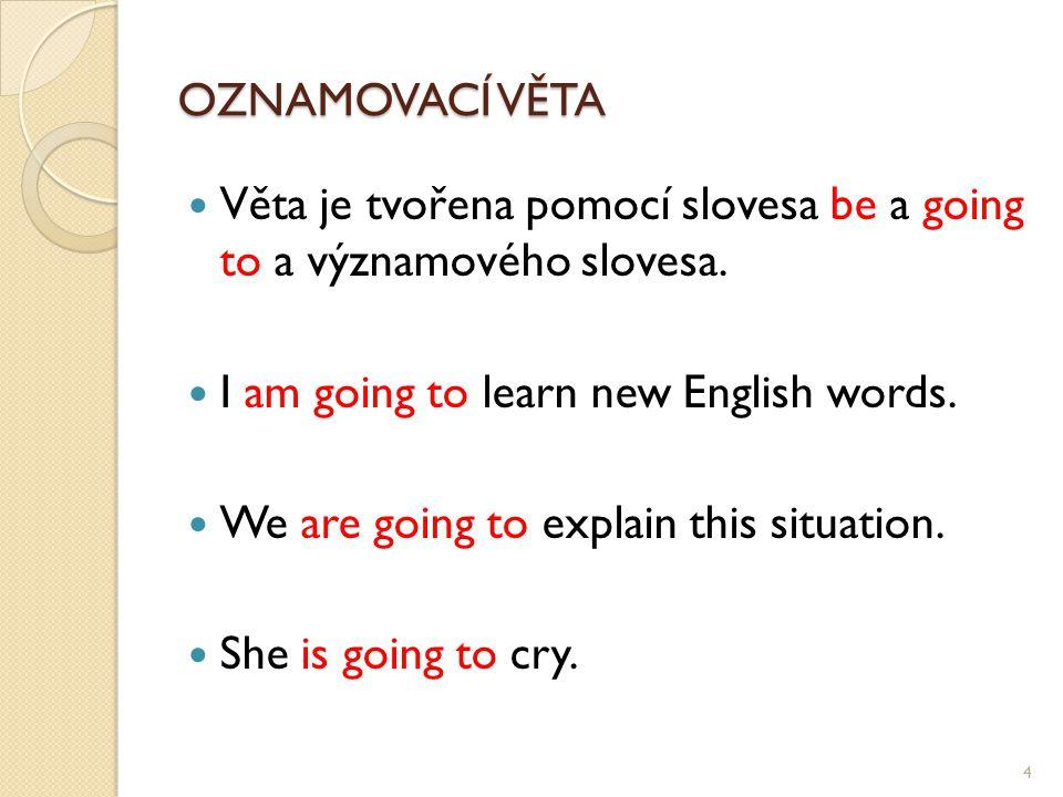 OZNAMOVACÍ VĚTA Věta je tvořena pomocí slovesa be a going to a významového slovesa.