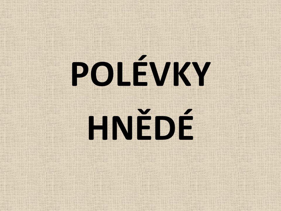 POLÉVKY HNĚDÉ