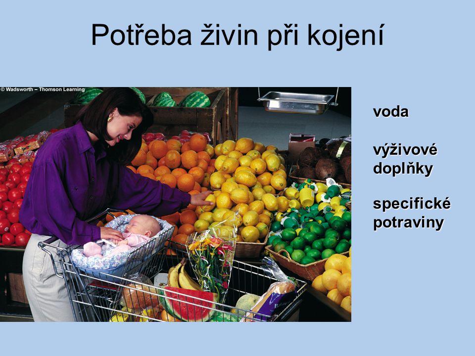 Potřeba živin při kojení voda výživové doplňky specifické potraviny