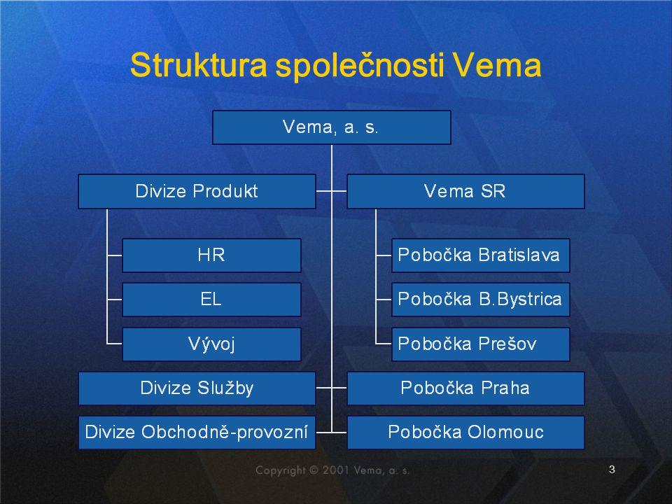 3 Struktura společnosti Vema
