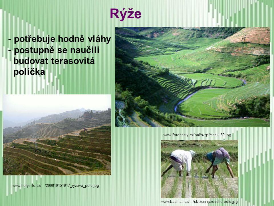 - nebylo odnikud převzato, vyvinulo se samostatně - velmi pečlivý způsob obdělávání půdy (zahradničení - námaha, ale větší úroda) -důmyslné závlahové