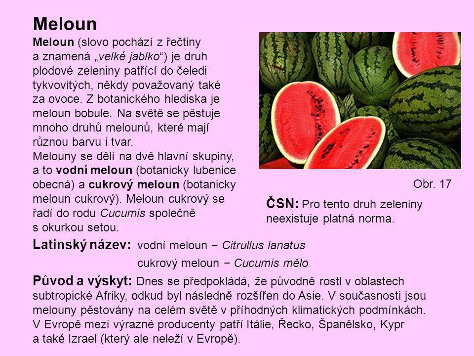 """Meloun Meloun (slovo pochází z řečtiny a znamená """"velké jablko"""") je druh plodové zeleniny patřící do čeledi tykvovitých, někdy považovaný také za ovoc"""