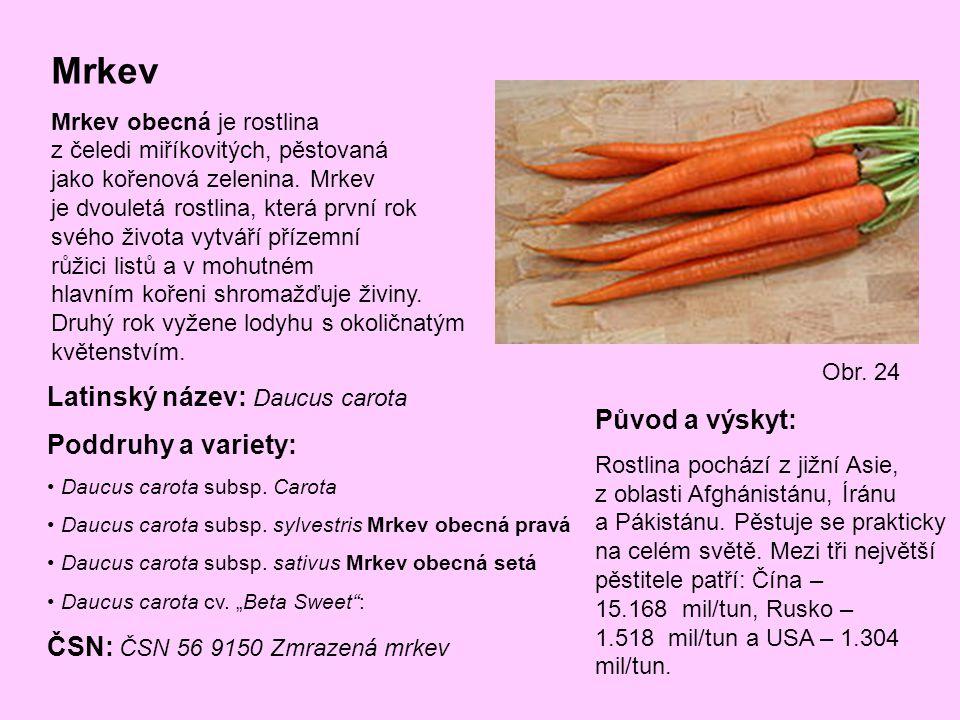 Mrkev Mrkev obecná je rostlina z čeledi miříkovitých, pěstovaná jako kořenová zelenina. Mrkev je dvouletá rostlina, která první rok svého života vytvá