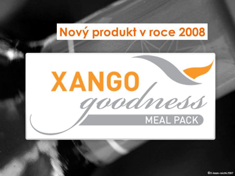 Nový produkt v roce 2008 © X-team-reichl-2007