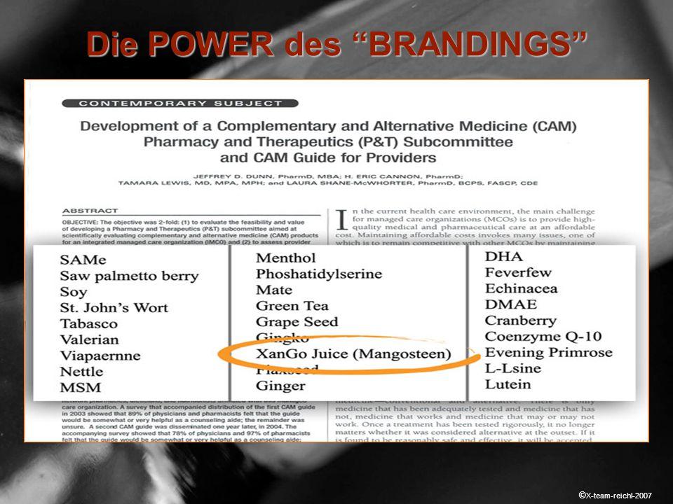 © X-team-reichl-2007 Branding Die POWER des BRANDINGS