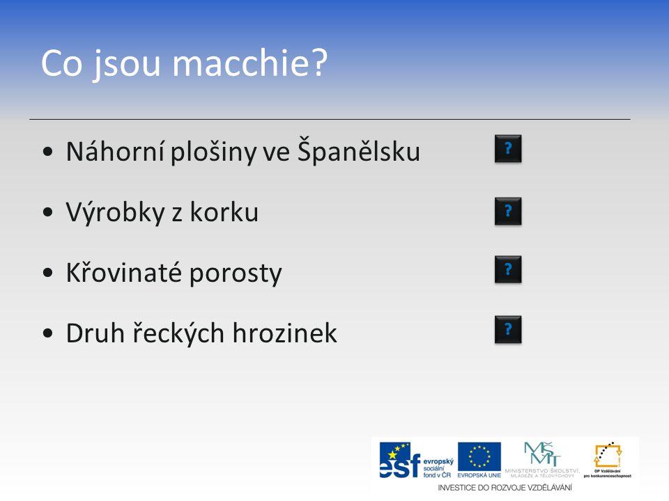 Co jsou macchie? Náhorní plošiny ve Španělsku Výrobky z korku Křovinaté porosty Druh řeckých hrozinek