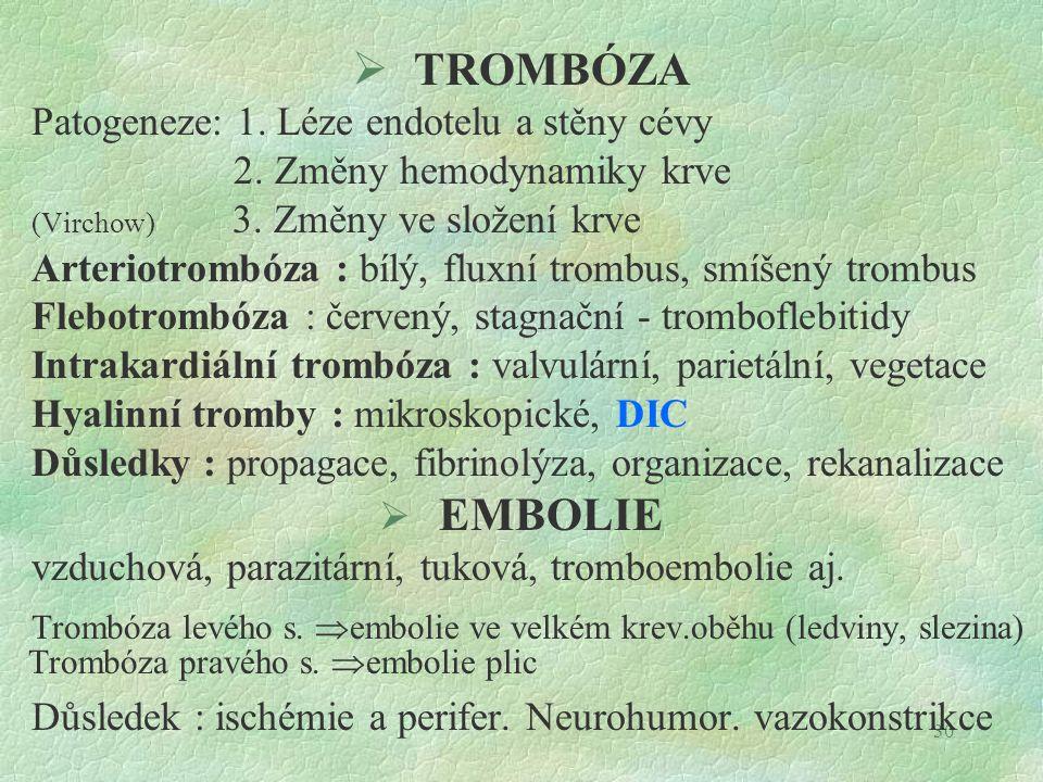 30  TROMBÓZA Patogeneze: 1. Léze endotelu a stěny cévy 2. Změny hemodynamiky krve (Virchow) 3. Změny ve složení krve Arteriotrombóza : bílý, fluxní t