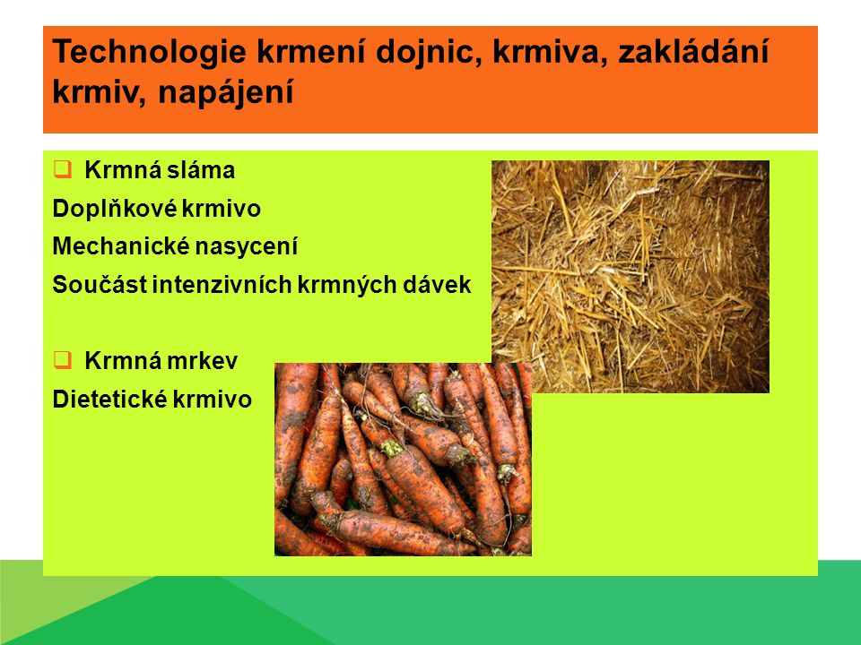 Technologie krmení dojnic, krmiva, zakládání krmiv, napájení  Krmná sláma Doplňkové krmivo Mechanické nasycení Součást intenzivních krmných dávek  Krmná mrkev Dietetické krmivo