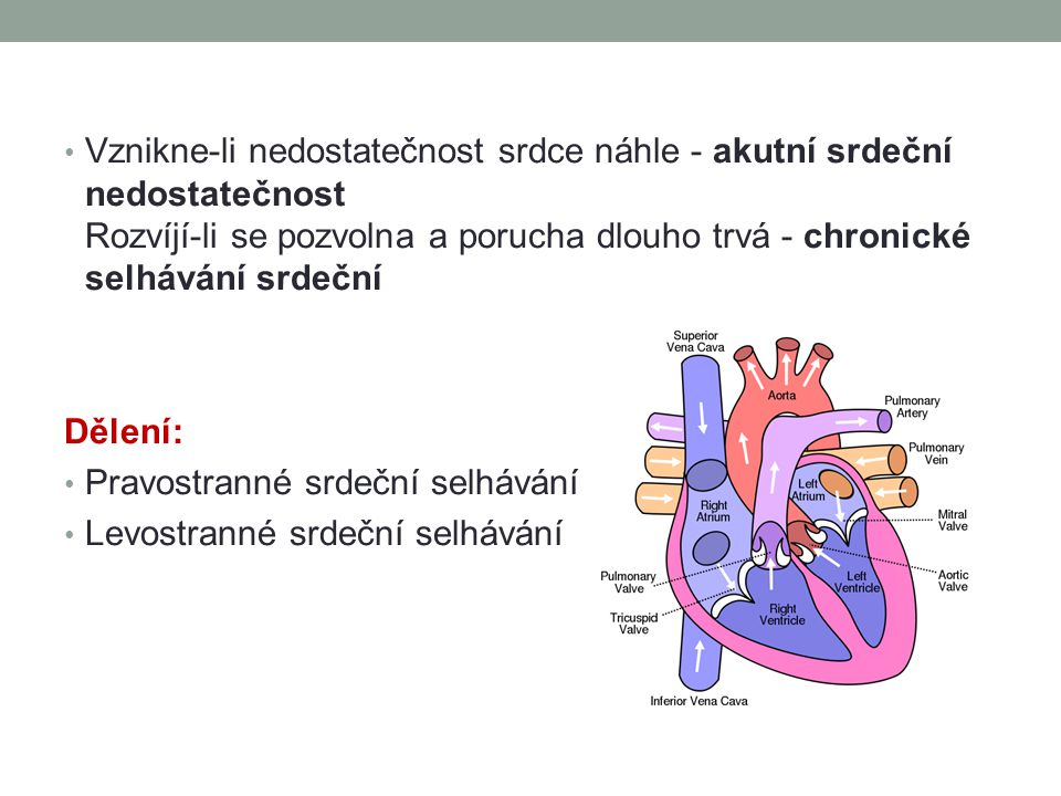 Vznikne-li nedostatečnost srdce náhle - akutní srdeční nedostatečnost Rozvíjí-li se pozvolna a porucha dlouho trvá - chronické selhávání srdeční Dělen