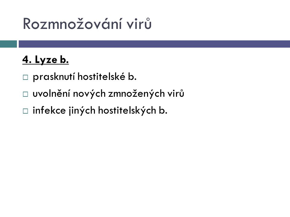 Rozmnožování virů 4. Lyze b.  prasknutí hostitelské b.  uvolnění nových zmnožených virů  infekce jiných hostitelských b.