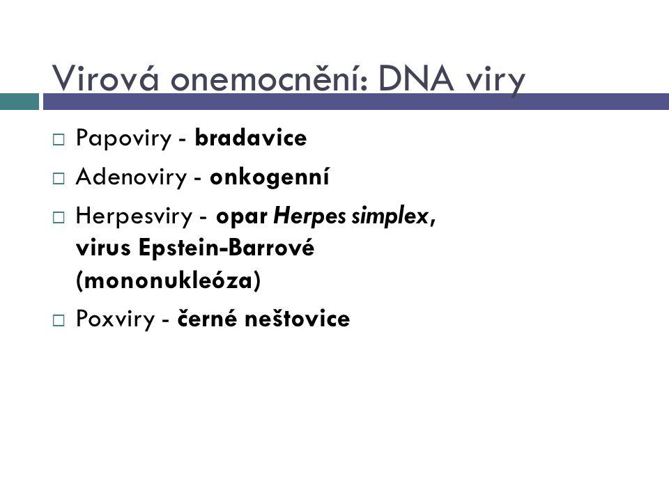 Virová onemocnění: DNA viry  Papoviry - bradavice  Adenoviry - onkogenní  Herpesviry - opar Herpes simplex, virus Epstein-Barrové (mononukleóza) 