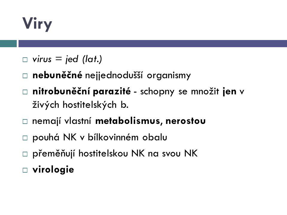 Stavba virionu NK (RNA, DNA) kapsida (bílkovinný obal) membránové obaly (bílkoviny, fosfolipidy)