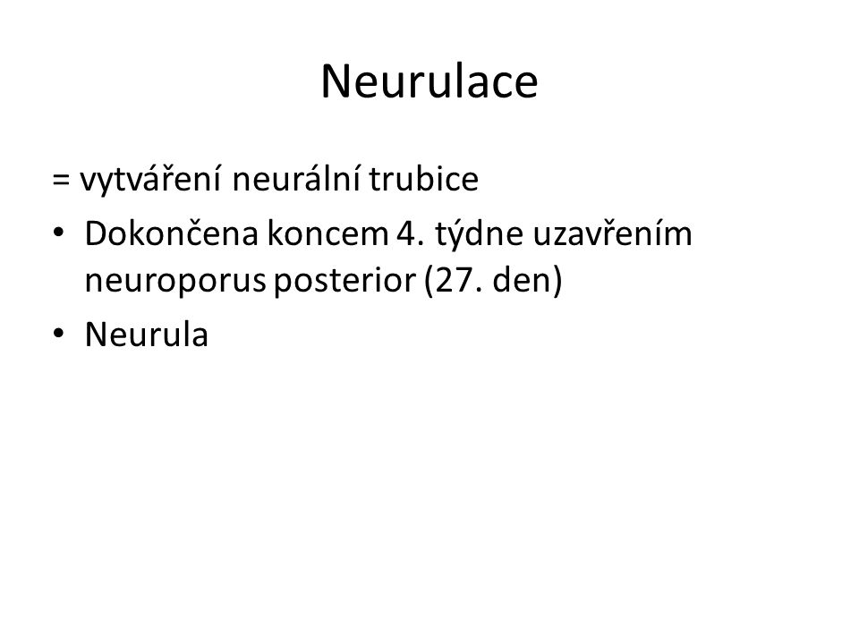 Neurulace = vytváření neurální trubice Dokončena koncem 4.