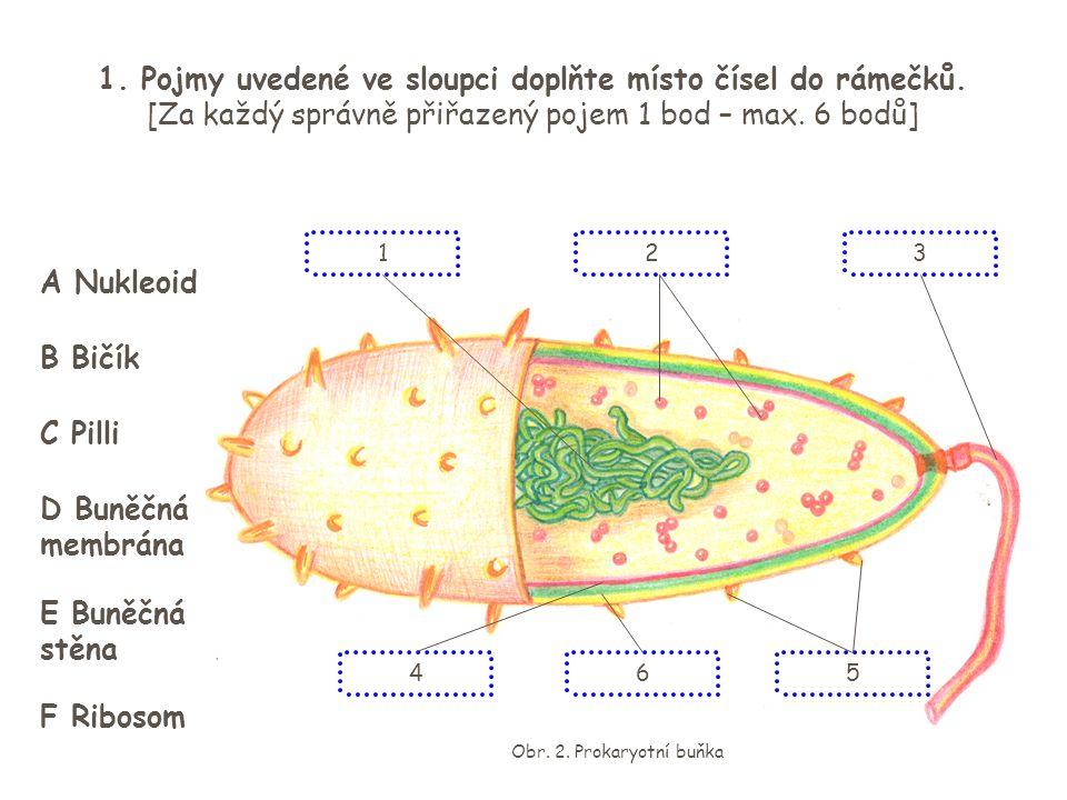 Obr. 2. Prokaryotní buňka 1. Pojmy uvedené ve sloupci doplňte místo čísel do rámečků. [Za každý správně přiřazený pojem 1 bod – max. 6 bodů] 23 56 1 4
