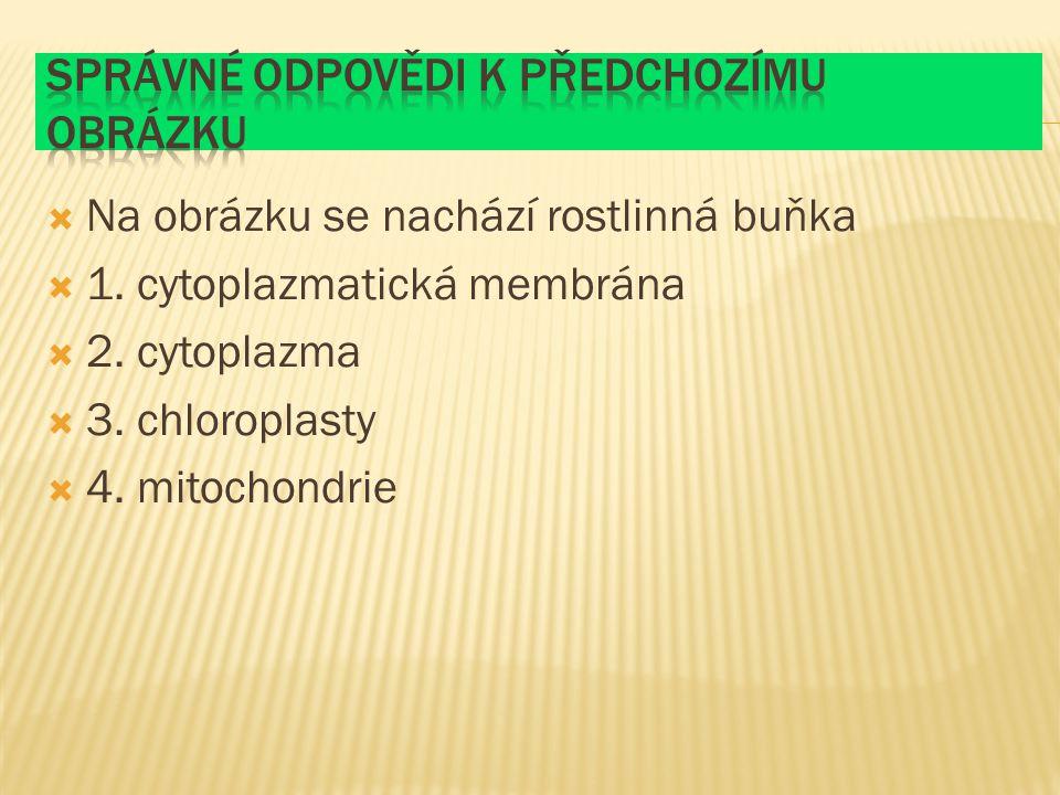 Na obrázku se nachází rostlinná buňka  1.cytoplazmatická membrána  2.