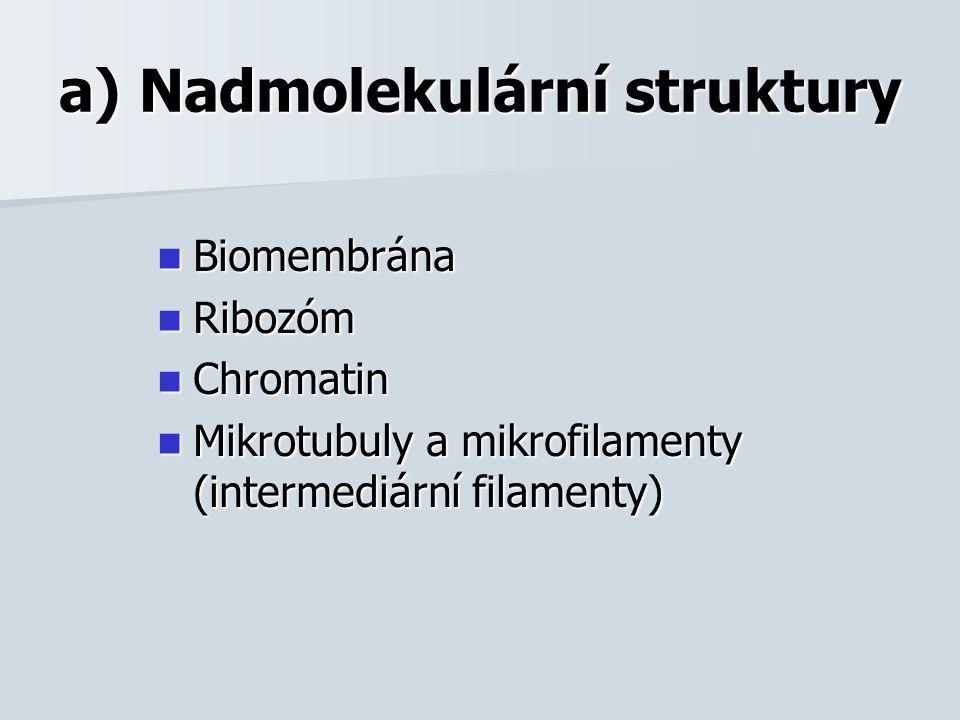 a) Nadmolekulární struktury Biomembrána Biomembrána Ribozóm Ribozóm Chromatin Chromatin Mikrotubuly a mikrofilamenty (intermediární filamenty) Mikrotubuly a mikrofilamenty (intermediární filamenty)