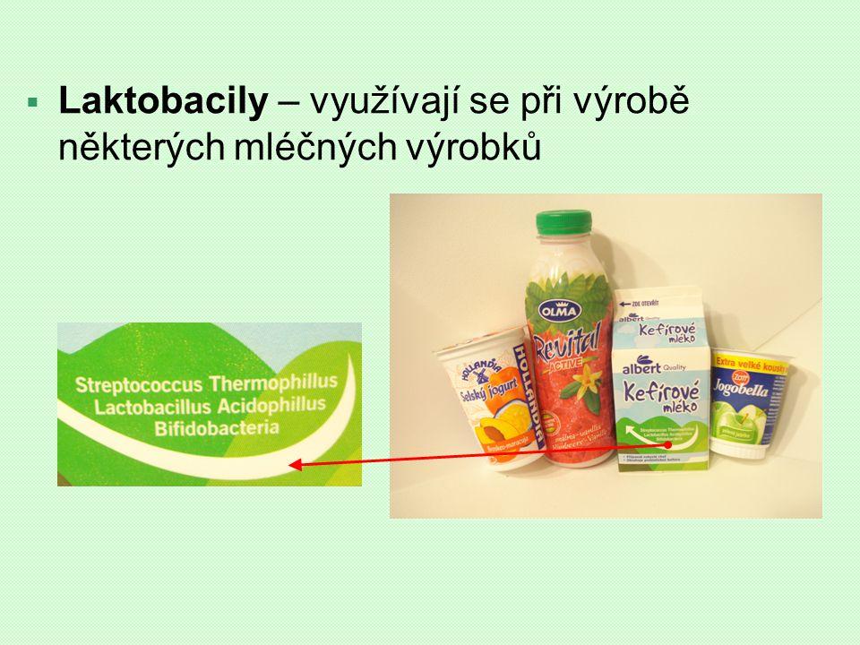  Laktobacily – využívají se při výrobě některých mléčných výrobků