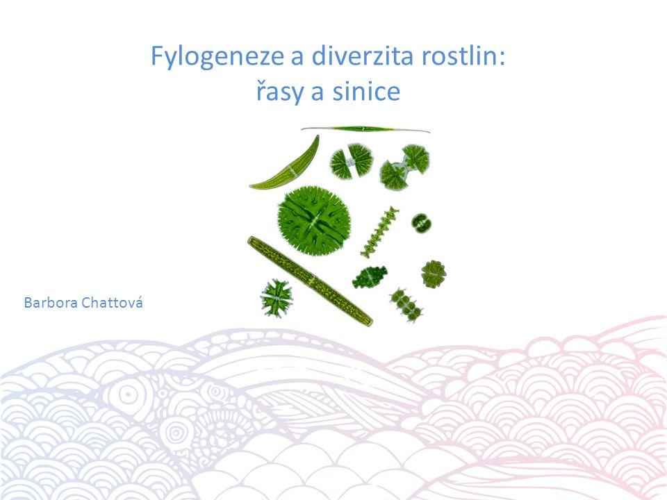 Řasy Euglenophyta (krásnoočka) Cryptophyta (skrytěnky) Dinophyta (obrněnky) Chromophyta (hnědé řasy) Rhodophyta (ruduchy) Chlorophyta (zelené řasy) Charophyta (chary)