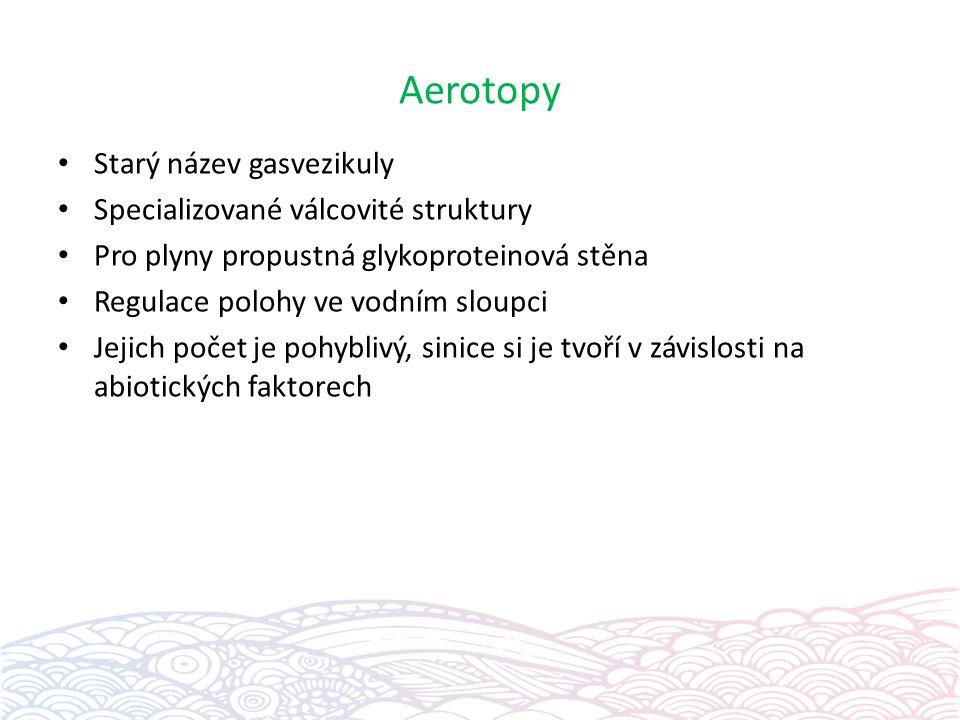 Aerotopy Starý název gasvezikuly Specializované válcovité struktury Pro plyny propustná glykoproteinová stěna Regulace polohy ve vodním sloupci Jejich
