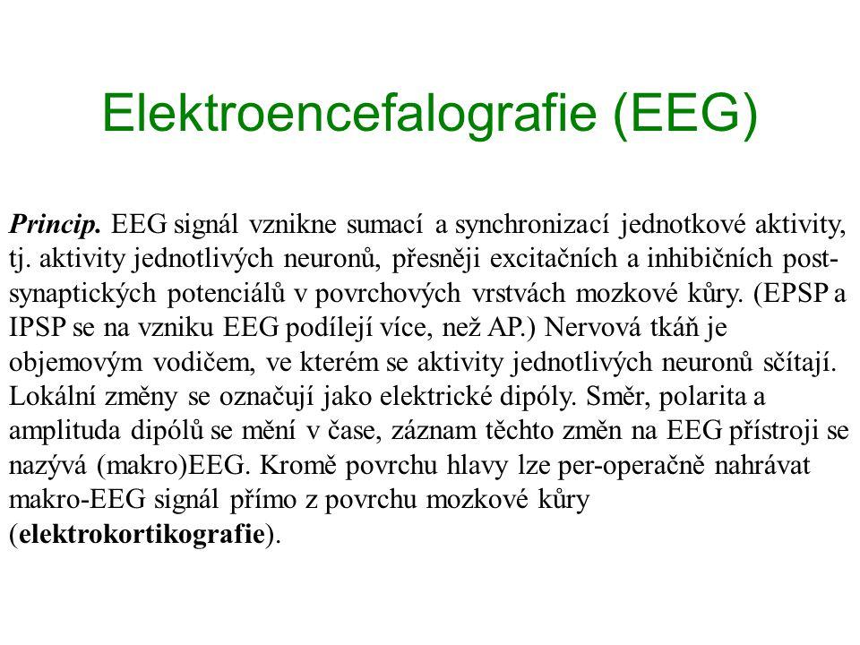 Elektroencefalografie (EEG) Princip. EEG signál vznikne sumací a synchronizací jednotkové aktivity, tj. aktivity jednotlivých neuronů, přesněji excita