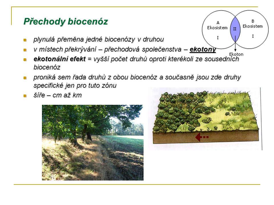 Přechody biocenóz plynulá přeměna jedné biocenózy v druhou plynulá přeměna jedné biocenózy v druhou v místech překrývání – přechodová společenstva – ekotony v místech překrývání – přechodová společenstva – ekotony ekotonální efekt = vyšší počet druhů oproti kterékoli ze sousedních biocenóz ekotonální efekt = vyšší počet druhů oproti kterékoli ze sousedních biocenóz proniká sem řada druhů z obou biocenóz a současně jsou zde druhy specifické jen pro tuto zónu proniká sem řada druhů z obou biocenóz a současně jsou zde druhy specifické jen pro tuto zónu šíře – cm až km šíře – cm až km