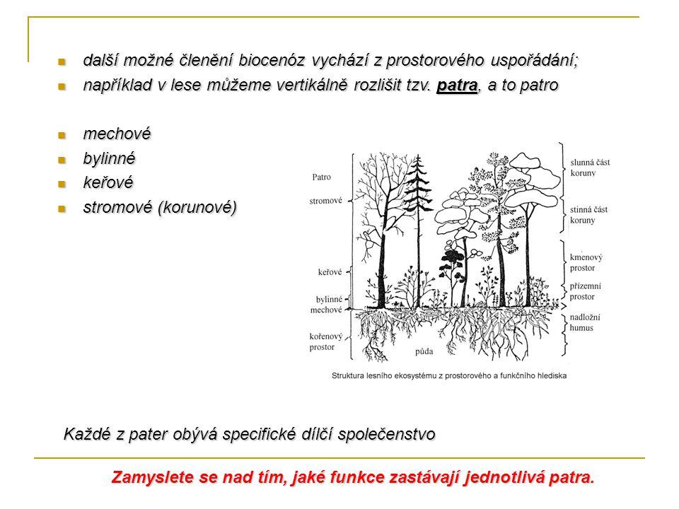 další možné členění biocenóz vychází z prostorového uspořádání; další možné členění biocenóz vychází z prostorového uspořádání; například v lese můžeme vertikálně rozlišit tzv.
