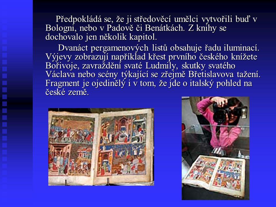 DVANÁCT listů pergamenu Čeští vědci znají osm úplných rukopisů Dalimilovy kroniky a pět zlomků. Žádný z nich však není tak bohatě ilustrovaný jako neč