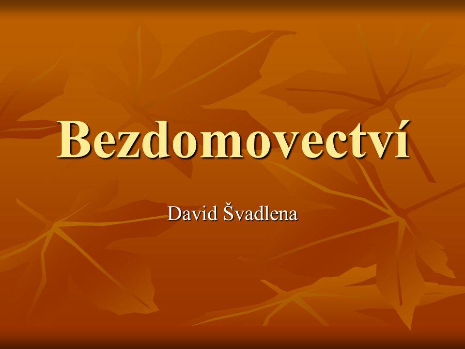 Bezdomovectví David Švadlena