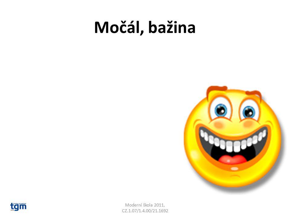 Močál, bažina Moderní škola 2011, CZ.1.07/1.4.00/21.1692