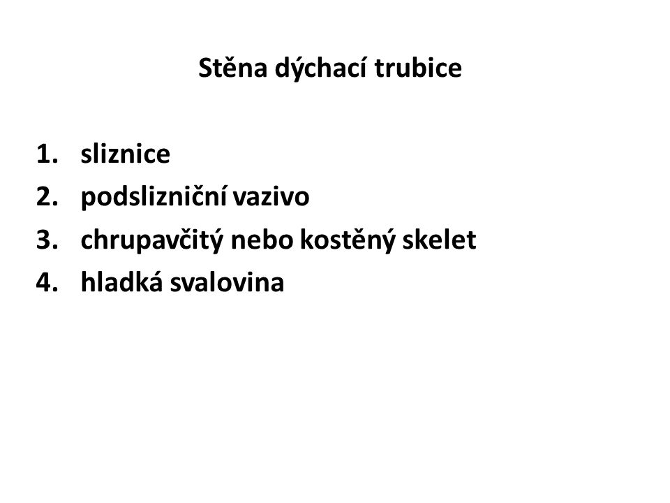 Stěna dýchací trubice 1.sliznice 2.podslizniční vazivo 3.chrupavčitý nebo kostěný skelet 4.hladká svalovina