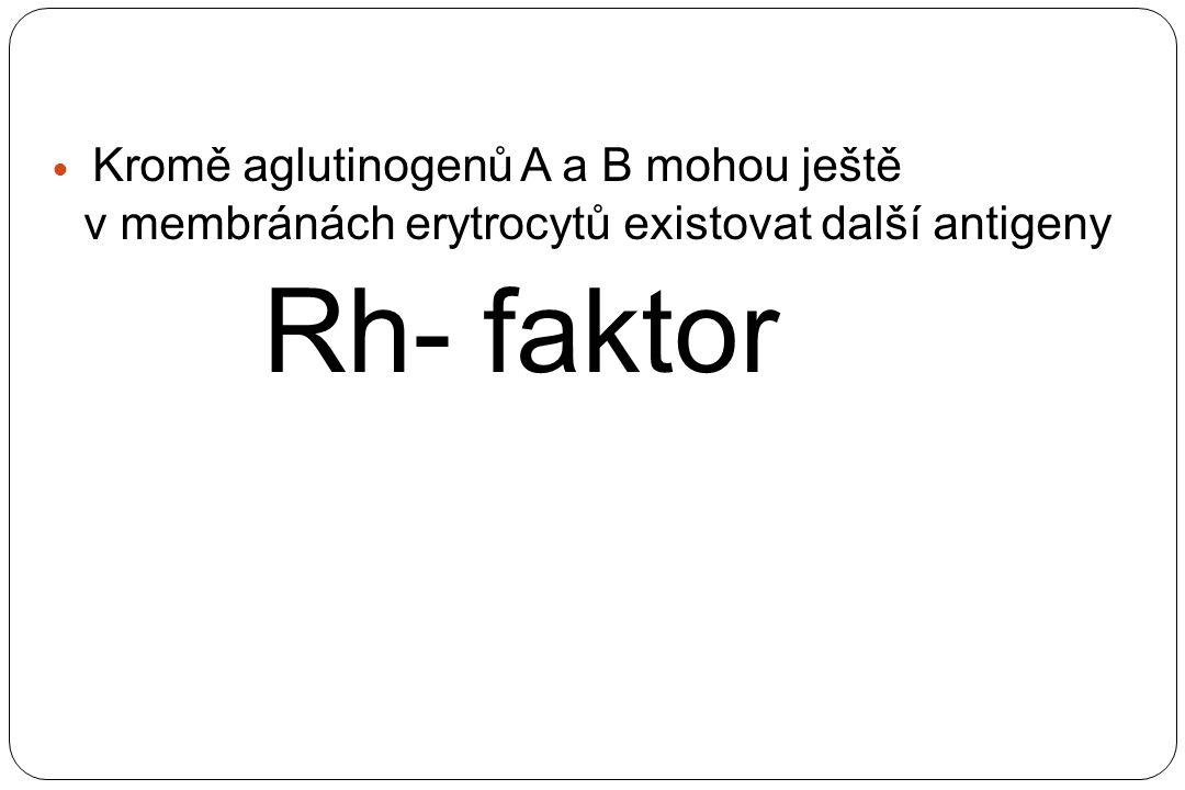 Kromě aglutinogenů A a B mohou ještě v membránách erytrocytů existovat další antigeny Rh- faktor